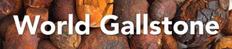 World Gallstone Logo