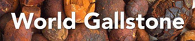 World Gallstone Logo